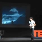 8-TEDx
