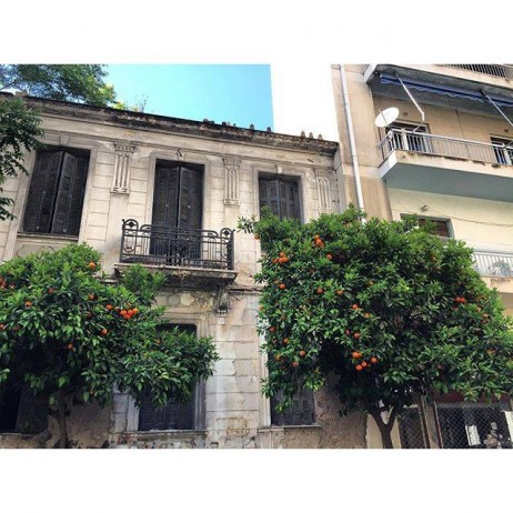 I enjoyed getting lost in the streets of Athens. It's especially fun when you find tangerines growing on random trees for passers-by :)